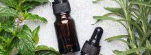 Essential Oils Expert Relax